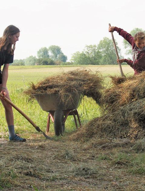 Schülerinnen und Schüler beim Heuwenden des Strohs für die Futterversorgung der Esel.