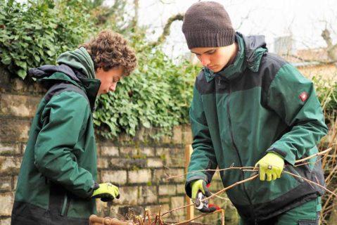 Im fachpraktischer Unterricht im Bereich Agrarwirtschaft wir der Schulgarten gepflegt.
