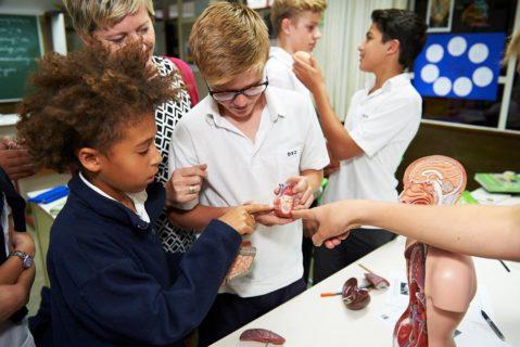 Die Deutsche Internationale Schule in Johannesburg ist eine der 140 Deutschen Auslandsschulen. Vor zwei Jahren hatte die Schule den Deutschen Schulpreis gewonnen.