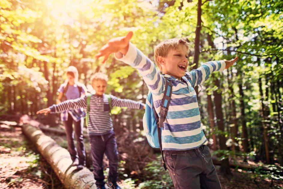 Kinder balancieren über einen umgefallenen Baum.