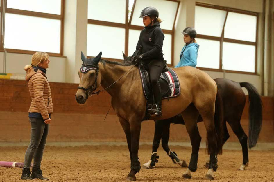 eine Reitlehrerin spricht mit ihrer Schülerin, die auf einem Pferd sitzt, in der Reithalle