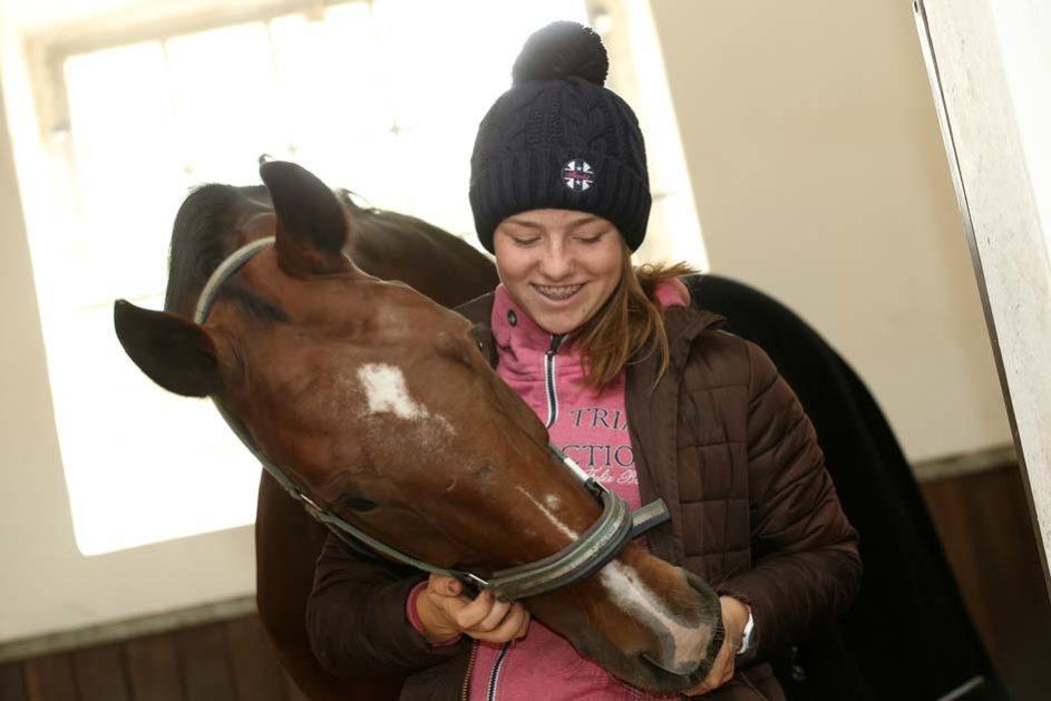 ein Mädchen gibt ihrem Pferd ein Leckerli