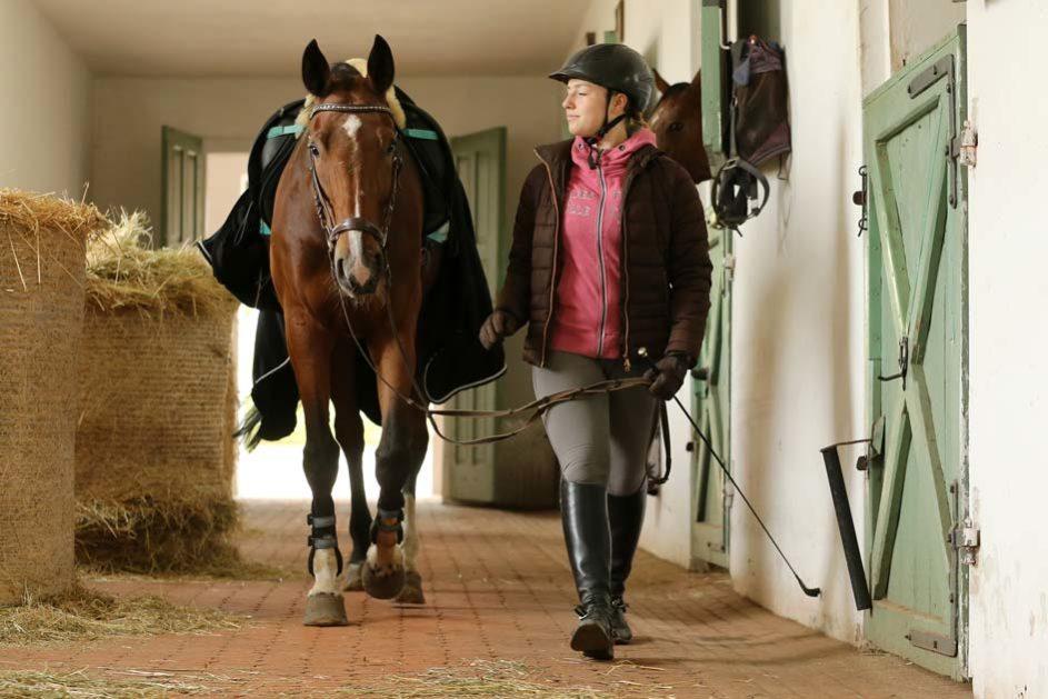 ein Mädchen führt ihr Pferd durch den Stall