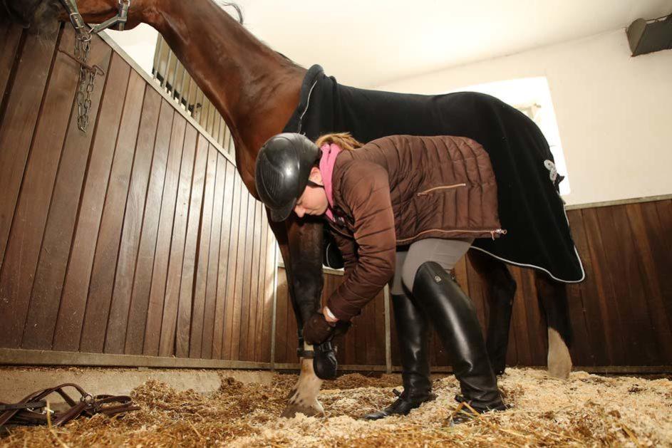 ein Mädchen kratzt ihrem Pferd die Hufe aus