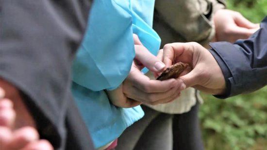 Eine Hand hält ein Stück gepresste Erde