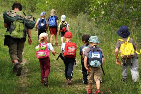 Kinder spazieren im Wald