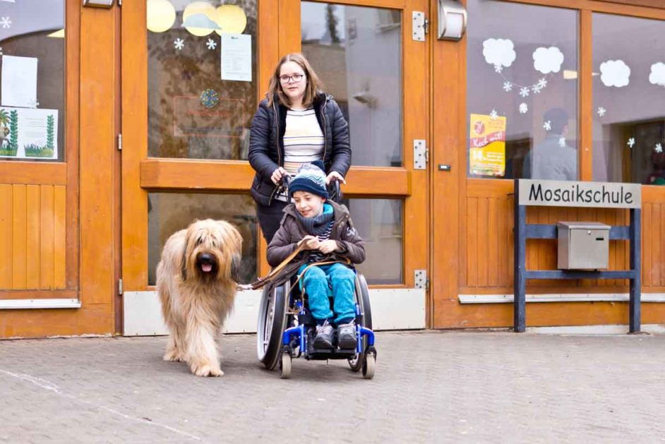 Ein Junge im Rollstuhl hält einen Hund an der Leine