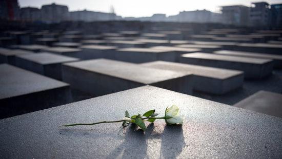 Rose auf Mahnmal zum Holocaust