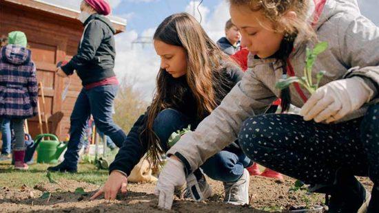 GemüseAckerdemie Zwei Mädchen auf dem Acker